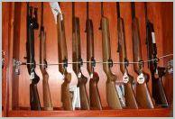 Country Sporting Guns
